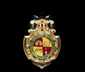Northern Ireland Optometric Society Logo - Nios
